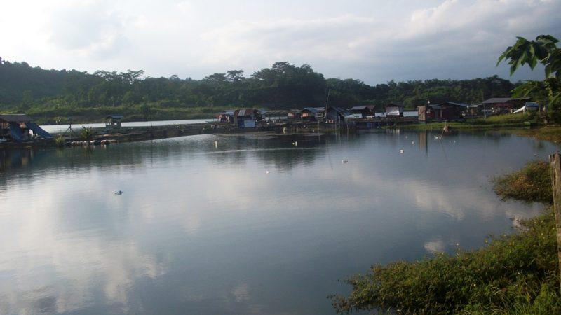 Pemandangan lubang tambang akibat invasi pertambangan Batu bara di desa Bendang Samarinda I Dokumentasi Pribadi